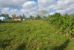 2,798 m2 upland property with a good mountain view.